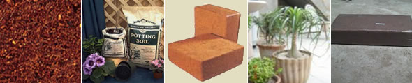 Washed Cocopeat - Double Washed Cocopeat (Fine Grade)